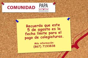PAPA - comunidad