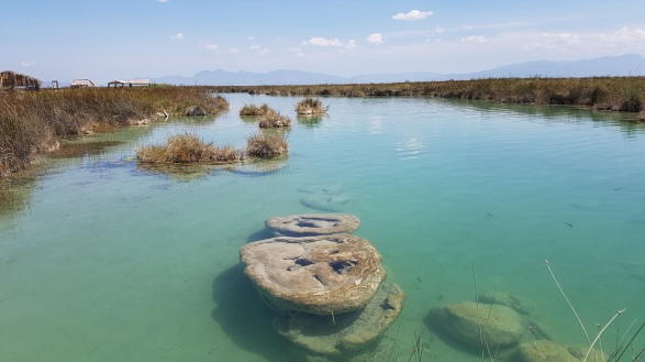 Río Mezquites